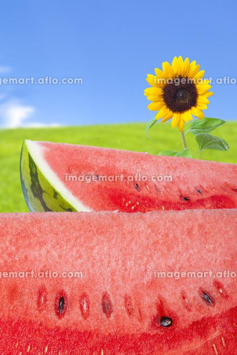 スイカと向日葵の販売画像