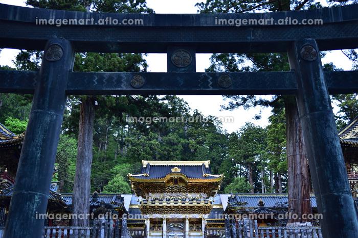 東照宮陽明門、ライトアップ、日光、栃木県の販売画像