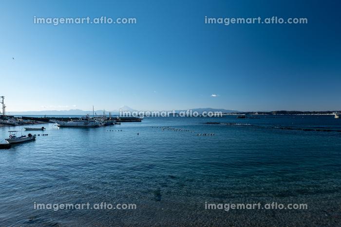 早春の葉山町の風景 真名瀬漁港 2月の販売画像