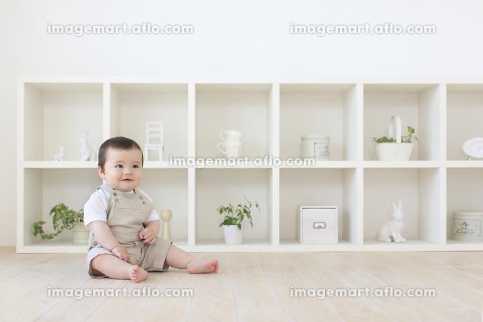 リビングでお座りするハーフの赤ちゃんの販売画像