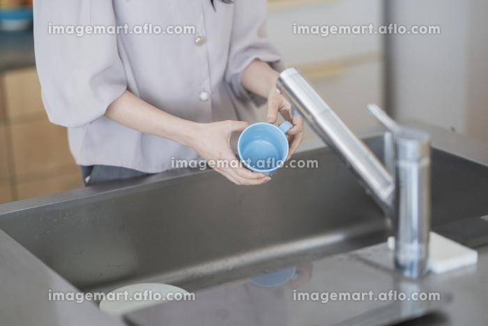 キッチンでお皿を洗う女性の販売画像