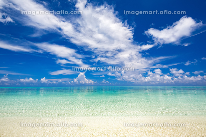 Beautiful sunny ocean beachの販売画像