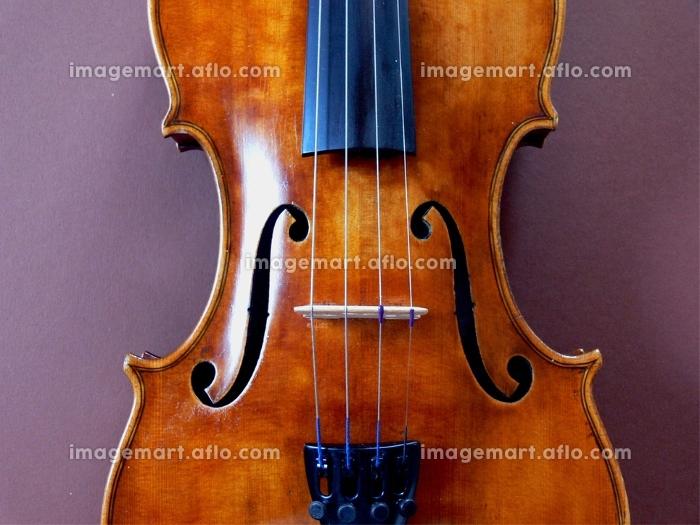 violinの販売画像