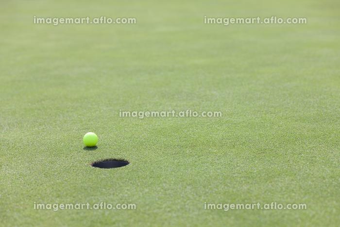 グリーンを転がるゴルフボールの販売画像