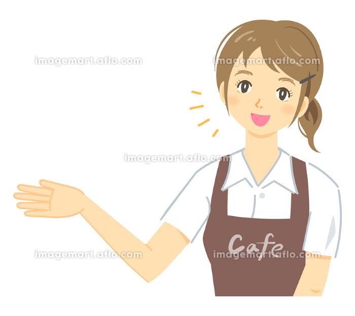 「紹介・案内をするポーズ」のカフェ店員の女性(茶色のエプロン)の販売画像