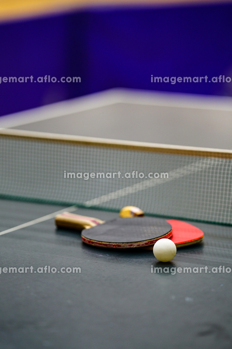 卓球台とラケットの販売画像