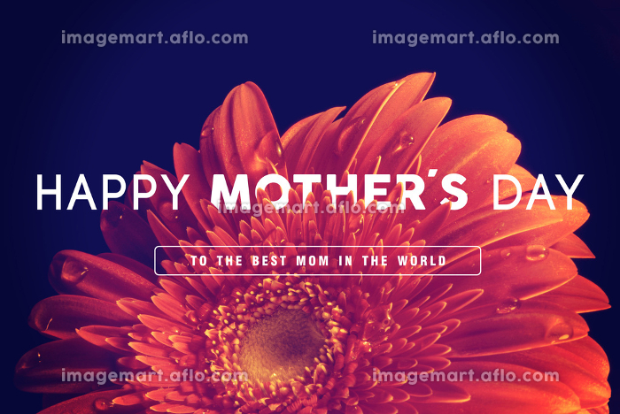 Happy Mothers day greeting cardの販売画像