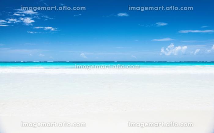 サンディ 浜 ロマンチックの販売画像