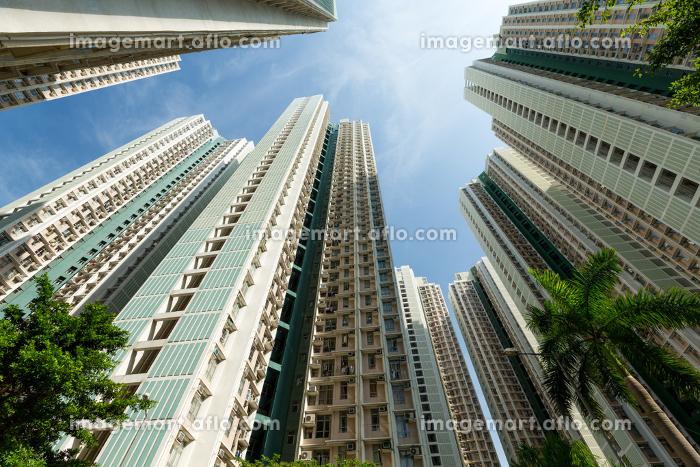 Skyscraper in a cityの販売画像
