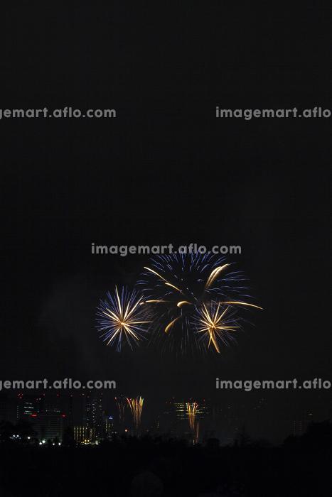 多摩川花火大会の販売画像