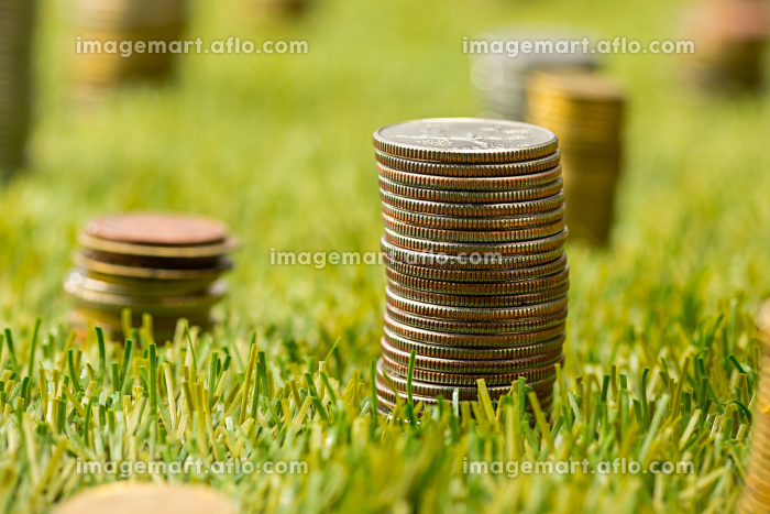 The columns of coins on grassの販売画像