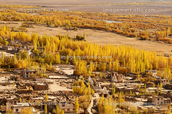 Leh village landscape in northen Indiaの販売画像
