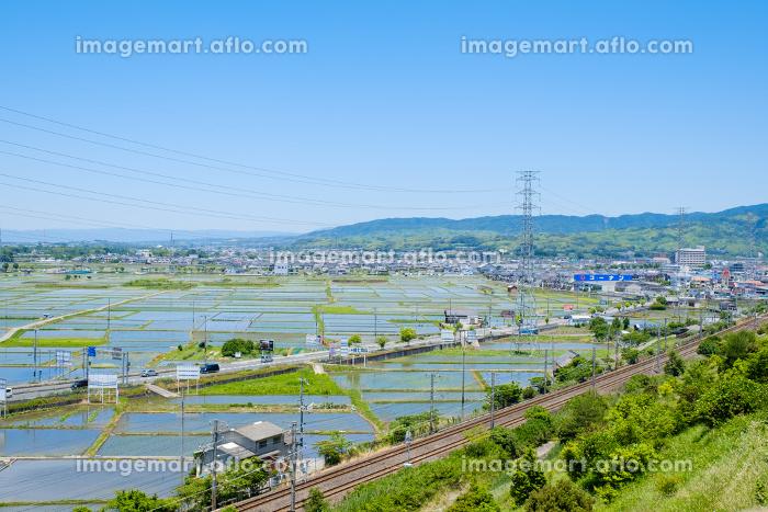 水田と鉄道のある風景 市街地 京都府木津川市 初夏の販売画像
