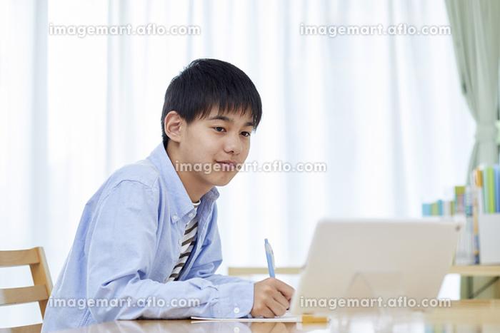自宅学習する男子中学生の販売画像