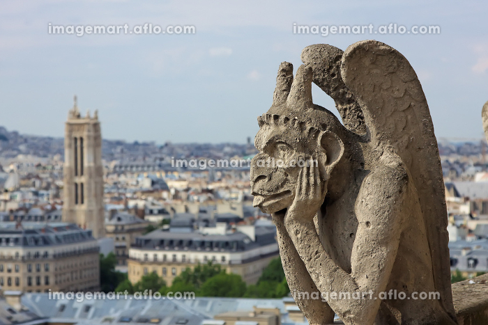Chimera on Notre Dame Cathedralの販売画像