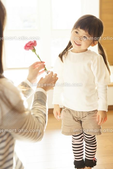 母親にカーネーションをプレゼントする女の子