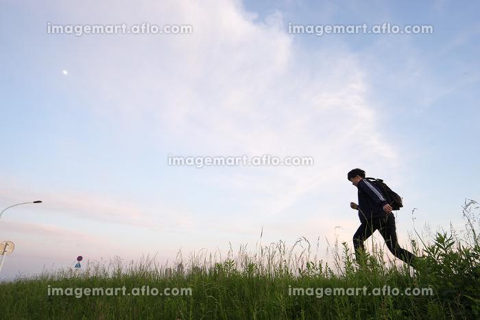 草原を走る男性の販売画像