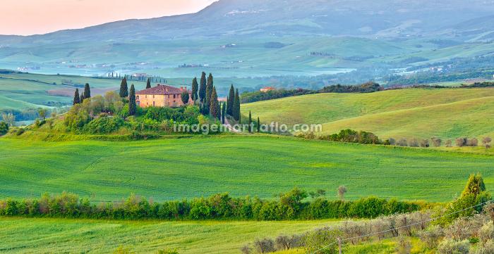 Tuscany at springの販売画像