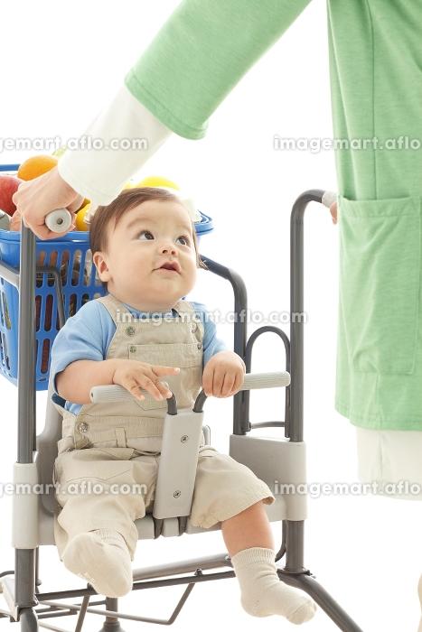 買い物カートに乗る赤ちゃんの販売画像