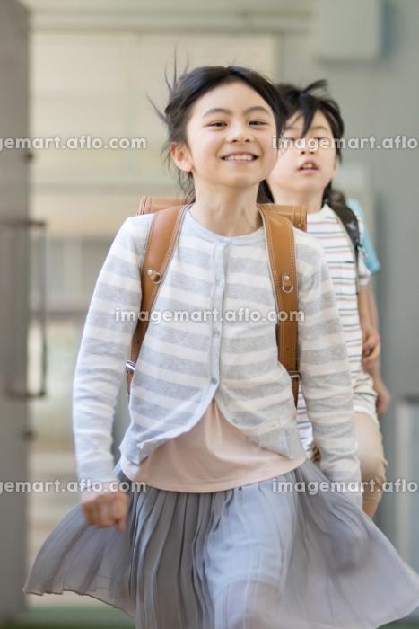ランドセルを背負った小学生の販売画像