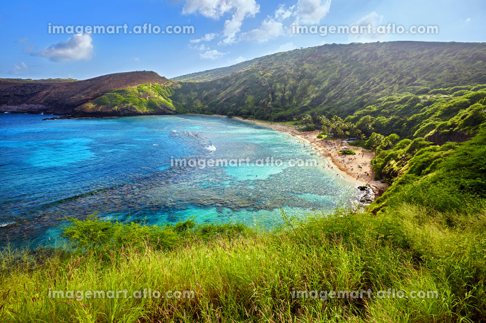 aerial view of snorkeling paradise Hanauma Bay, one of the most popular tourist destinations on Oahu, Hawaiiの販売画像