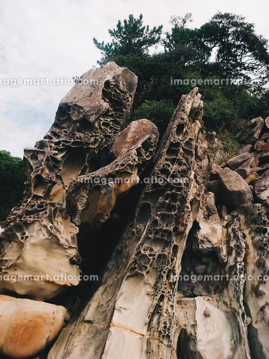 自然に出来た奇岩の風景(日本・高知県・竜串海岸)の販売画像