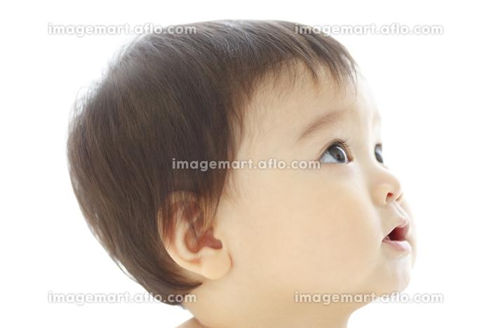 裸の赤ちゃんの販売画像