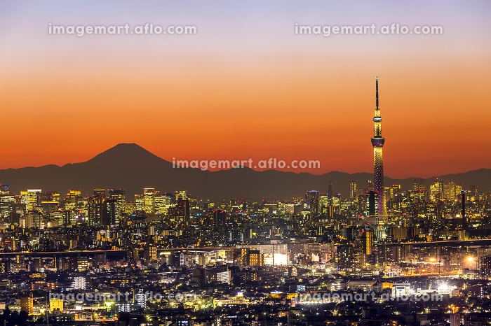 Tokyo Sunsetの販売画像