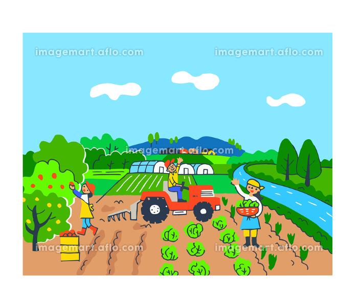 農業 果樹園と畑とビニールハウスの販売画像