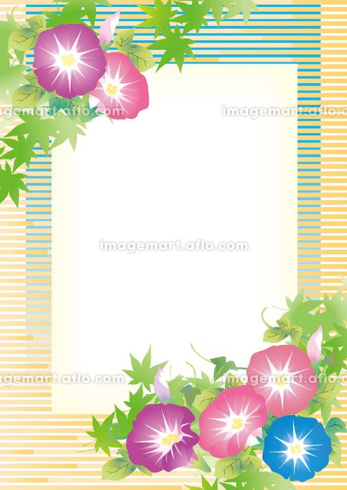 朝顔 風鈴 紅葉 朝顔のイラストの販売画像