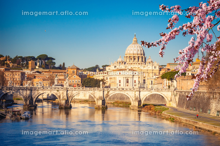 St. Peter's cathedral in Romeの販売画像