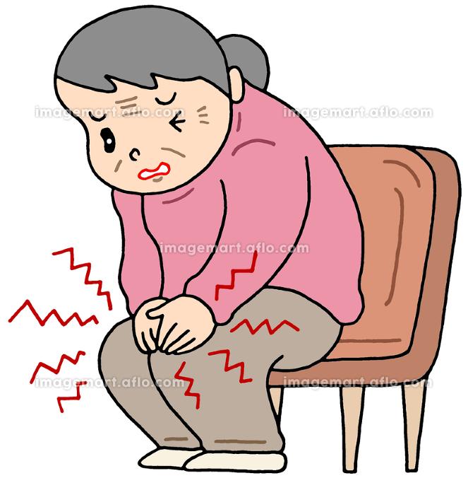 膝痛・変形性ひざ関節症の販売画像