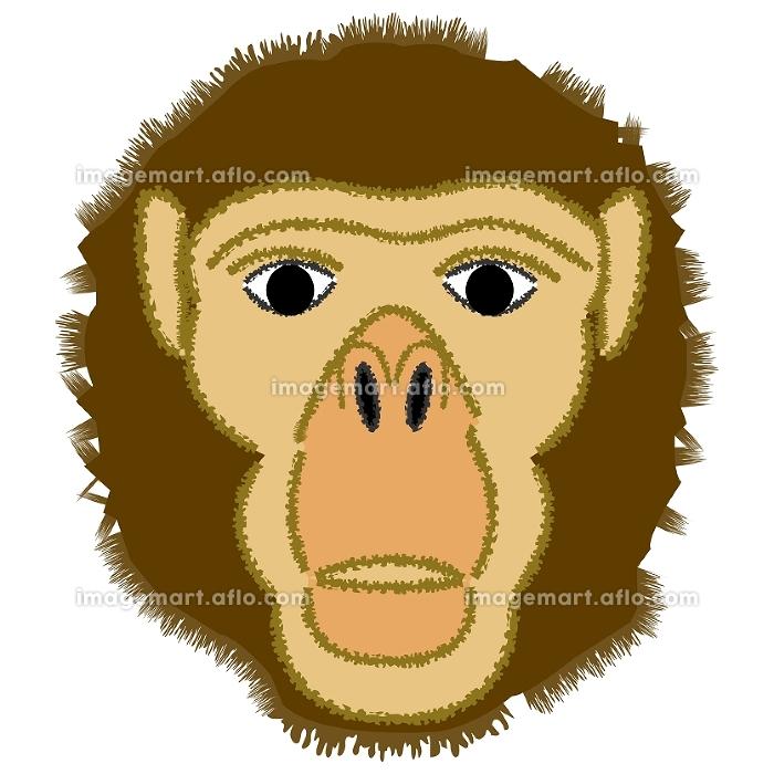 猿人イメージの販売画像