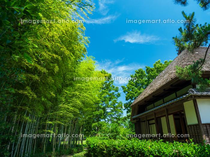 夏の青空と茅葺きの古民家 7月の販売画像