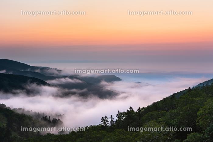 日本・7月の北海道 日勝峠、夜明けの雲海の販売画像