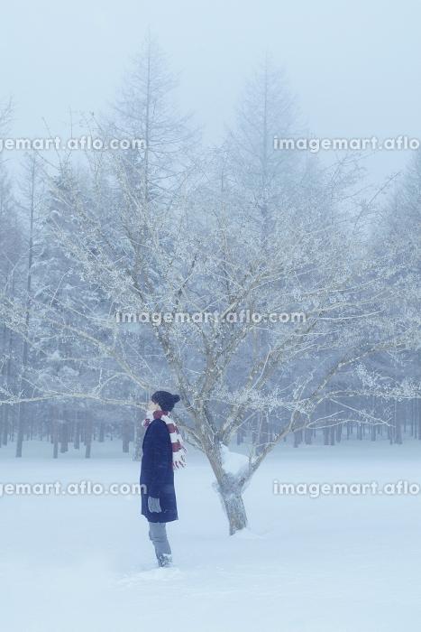 雪が積もった森で佇む日本人男性