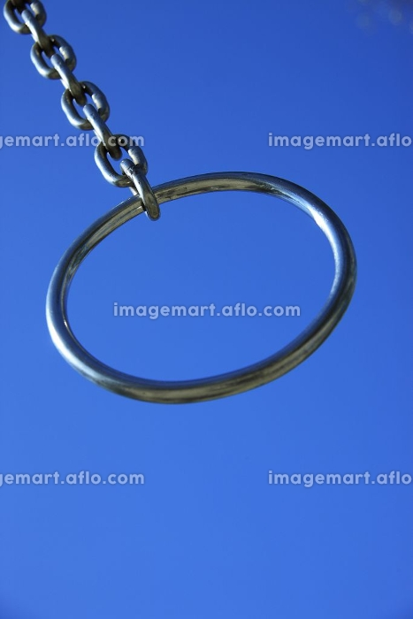 吊り輪の販売画像