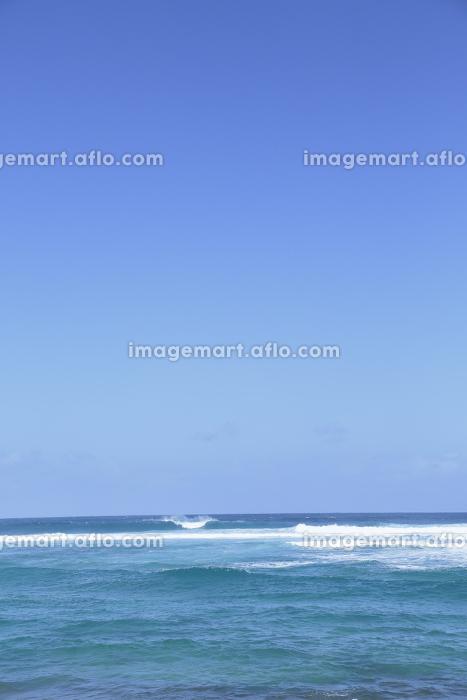 ハワイの青空と海の販売画像