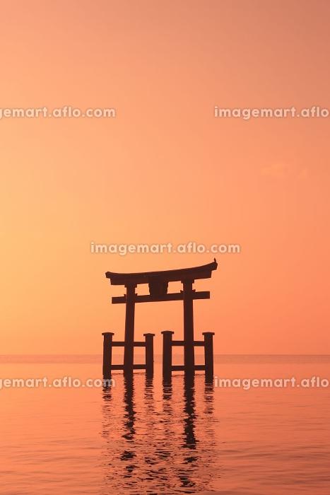琵琶湖、白髪神社の鳥居の販売画像