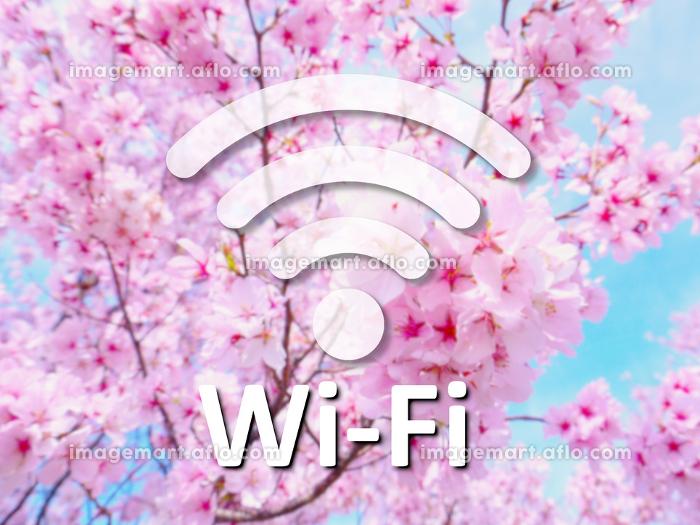 Wi-Fiの販売画像