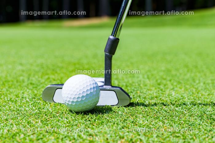 ゴルフ グリーン パッティング 【 アウトドア スポーツ の イメージ】の販売画像