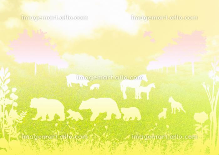 草原と動物の販売画像