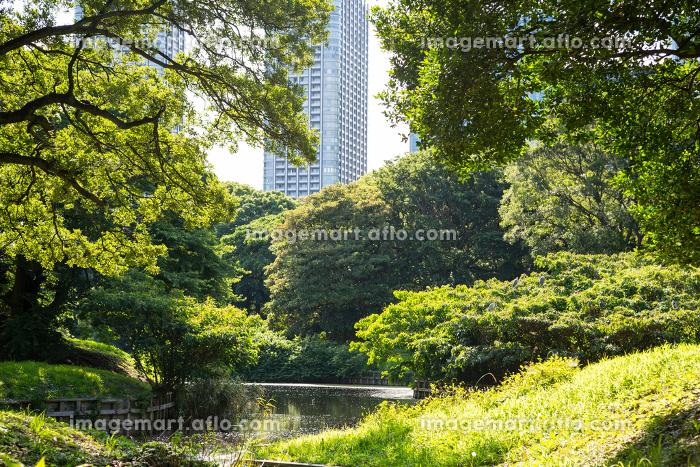 浜離宮恩賜庭園 2012年撮影の販売画像
