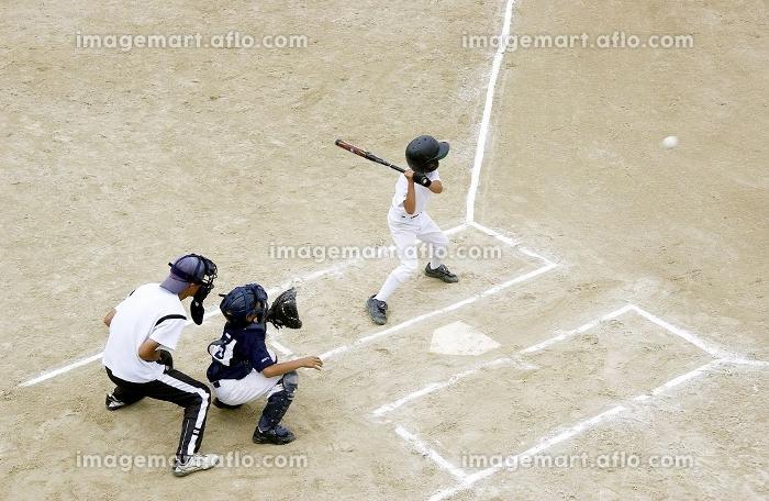 少年野球の販売画像