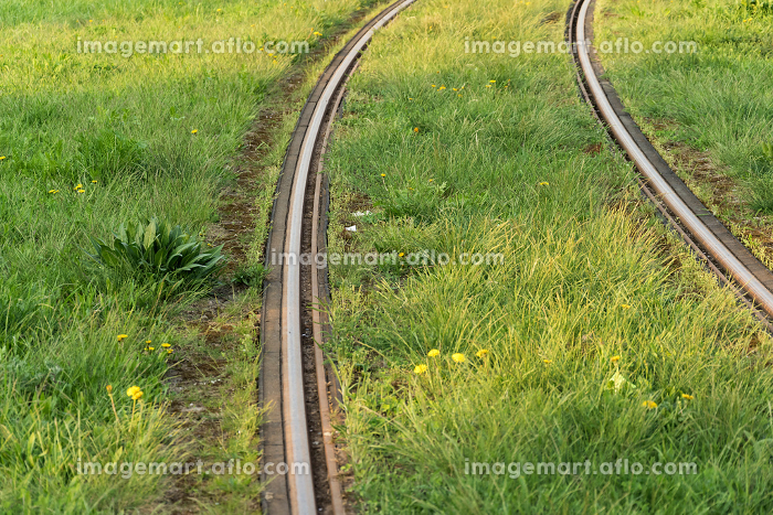 Train rails. Public transportation track covered by lawn. Modern , Wroc艂aw, Lower Silesian Voivodeship, Polandの販売画像
