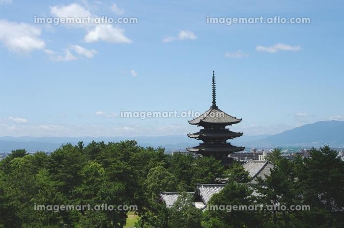 興福寺五重塔の販売画像