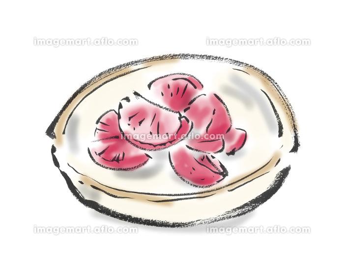 赤かぶ漬けの和風手描きイラスト素材の販売画像