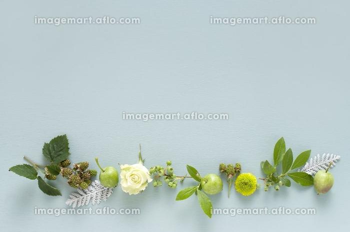 バラと木の実のフレーム