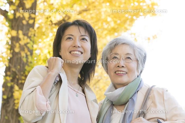 銀杏並木の下で微笑む母と娘の販売画像