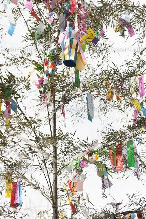機物神社七夕祭りの販売画像